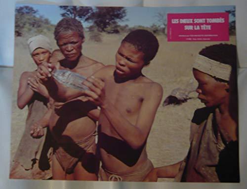 Série publicitaire complète de 12 photos couleurs (21 cm x 27 cm) de Les Dieux sont tombés sur la tête (1981) + dossier de presse (24 pages) + affiche (20 cm x 26 cm), film réalisé par Jamie Uys avec Marius Weyers, Sandra Prinsloo, Xao, etc. - Bon état.