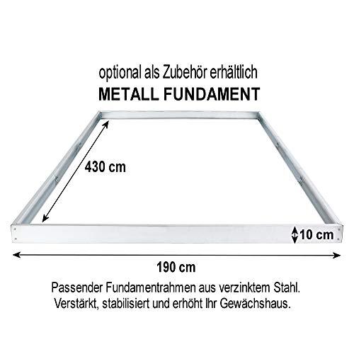 Zelsius – Aluminium Gewächshaus, Garten Treibhaus in verschiedenen Größen, mit Hohlkammerstegplatten, wahlweise mit Stahl-Fundament-Rahmen (190 x 430 cm – 6 mm Platten, ohne Fundament)
