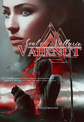 VALKNUT Soul of Valkyrie