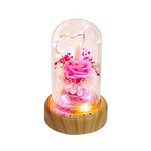 DEESEE(TM) (TM) Immerwährende Blume Musik Ball Micro Landscape Streamer Flasche Nachtlicht Bluetooth Lautsprecher für Paarliebhaber Geburtstag Urlaub Geschenk Light 55cm x 72cm a