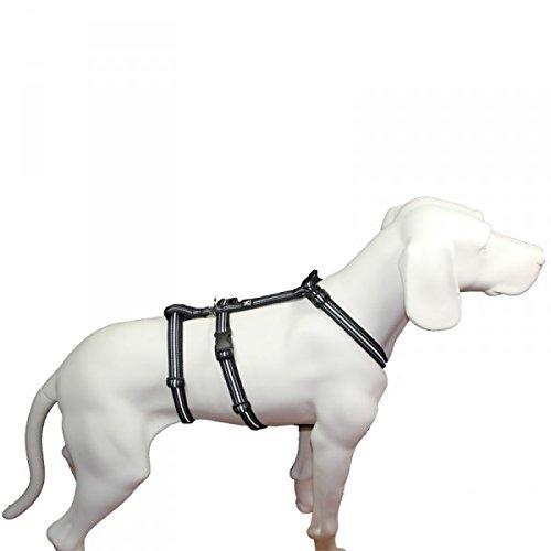 No Exit ausbruchsicheres Hundegeschirr für Angsthund, Sicherheitsgeschirr für Pflegehunde ,...