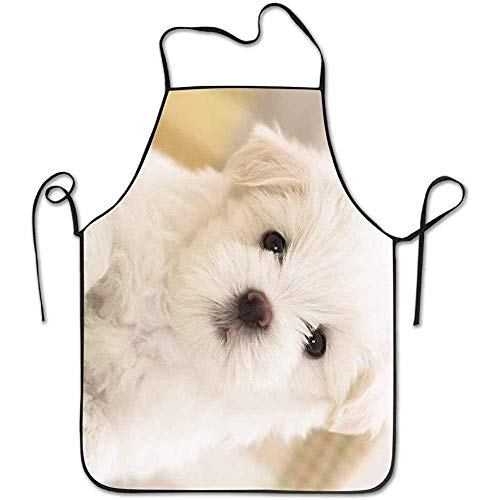 Cute Aprons Small White Cute Puppies Deluxe Cute Aprons Chef Kitchen Cooking and Men & Women Baking Bib BBQ - Lab Puppy Kostüm