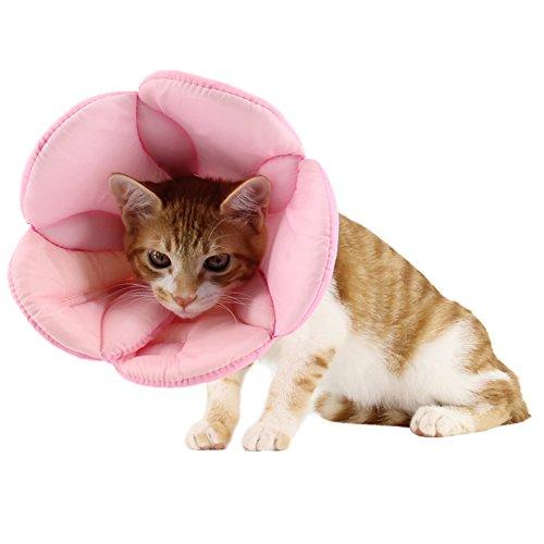 ZuckerTi komfortabel neuartig Blume Halskrause Halskragen Schutzkragen Wundheilung Hundehalsband Cone Schutz Smart Halsband Sicherheit für Hund Hunde Kätzchen Katze kaninchen Hase Haustier