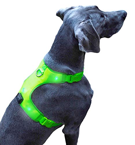 riijk LED Hundeweste für mehr Sicherheit, Warnweste in Grün Gelb, Hundegeschirr Weste verstellbar, 6 helle Lichter, Leuchthalsband