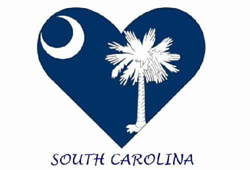 South Carolina-a forma di cuore bandiera-Confezione da 6termoadesivo trasferimenti per bianco/chiaro cotone