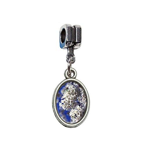 Cherry Blossoms Italienisches europäischen Euro-Stil Armband Charm Bead–für Pandora, Biagi, Troll,, Chamilla,, andere