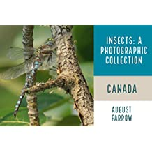 Insects & Arachnids: A Photographic Collection:  Canada (English Edition)