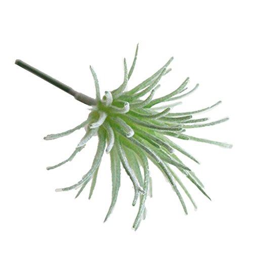 Kunstpflanze Sukkulente/Kunst Pflanze