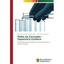 Palha da Carnaúba - Copernicia Cerifera: Remoção dos corantes azul de metileno ...