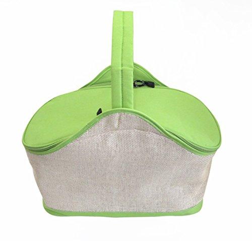 bolsa-isotrmica-para-picniccolor-verde