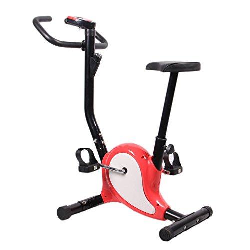 Blackpoolal YH-11 Vélo Ergomètre Vivog Roue Vélo Fitness h496b Fitness Vélo d'Appartement Cycle...