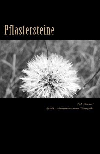 Pflastersteine: Gedichte - Ausschnitte aus einem Lebenszyklus