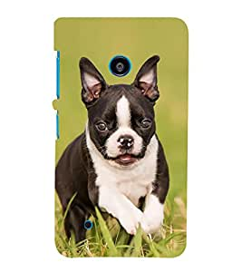 Fiobs Designer Back Case Cover for Nokia Lumia 530 :: Nokia Lumia 530 RM 1017 :: Nokia Lumia 530 Dual SIM :: Microsoft Lumia 530 Dual (Dog Puppy Black White Green Grass Case Cover)