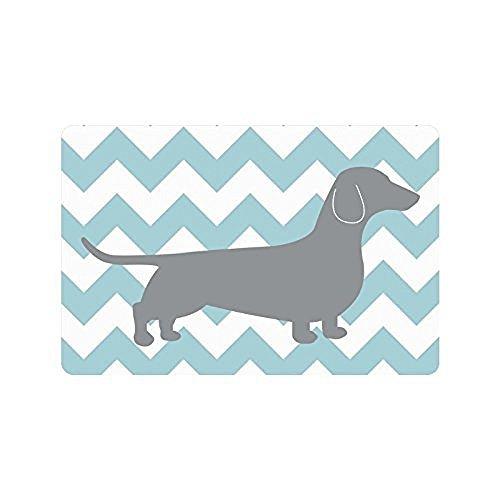 best bags Paillasson en Zigzag pour intérieur ou extérieur Motif Chevrons Bleu Blanc 60 x 40 cm, 739, 23.6\