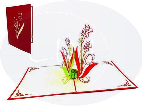LIN-POP UP Karten Blumen, 3D Karte Geburtstagskarte Gutschein Besserung, Dankeskarten Geburtstagskarten Glückwunschkarten Grußkarten Geburtstag, Blumenstrauß