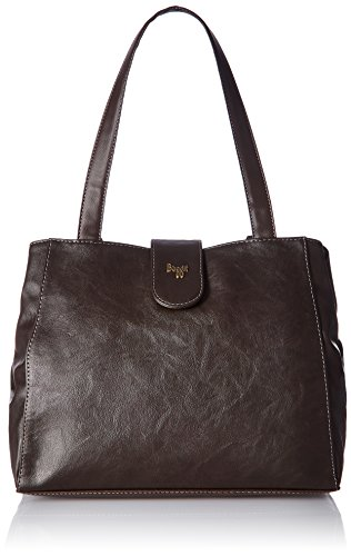 Baggit Women's Handbag (Brown)
