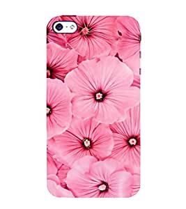 FUSON Pink Mallow Flower Background 3D Hard Polycarbonate Designer Back Case Cover for Apple iPhone 5S