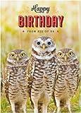 Geburtstagskarte Happy Birthday, Eulen-Goggly lustige Tiere, 3D, bewegliche Augen