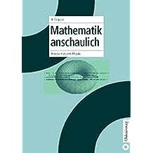 Mathematik anschaulich: Brückenkurs mit Maple