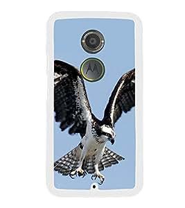 Prowling Eagle 2D Hard Polycarbonate Designer Back Case Cover for Motorola Moto X2 :: Motorola Moto X (2nd Gen) :: Motorola Moto X 2014 :: Motorola Moto X+1