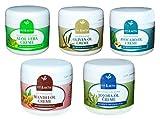 Wellness Creme Set Jojobaöl Mandelöl Aloe Vera Avocadoöl Olivenöl 5x 125 ml