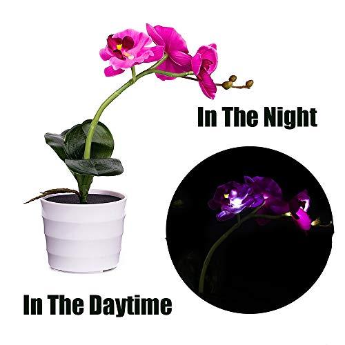 Lichter, Künstliche Blume Bonsai LED Lampe Garden Im Freien Decor (Lila) ()