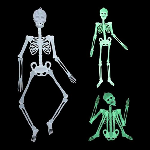 Glow Skeleton - 1pcs Halloween Party Scary Skull Decor Luminous Glow In The Dark Human Skeleton Hanging Decoration - Glitter Tablecloth Glou Favors Collar Gloves Dots Keyboards Easter Bedro (Scary Halloween Decorations Outdoor Diy)