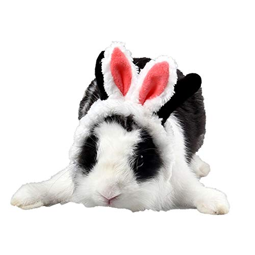 Kleine Tiermütze Hamster Weihnachtsmütze Stirnband Hasenohrenform Kostüm Mütze Kopfbedeckung für Haustier Irore Ratte Chinchilla Kaninchen Welpen Kätzchen Verkleidung Dekoration Kleintiere - Haustier Ratte Kostüm