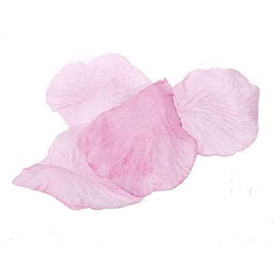Light Pink 100 Silk Flower Rose Petal Wedding Bridal Party Supply Decoration : everything 5 pounds (or less!)
