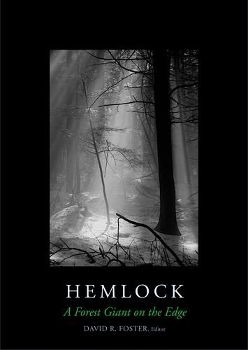 Hemlock: A Forest Giant on the Edge by David R. Foster (2014-06-03)