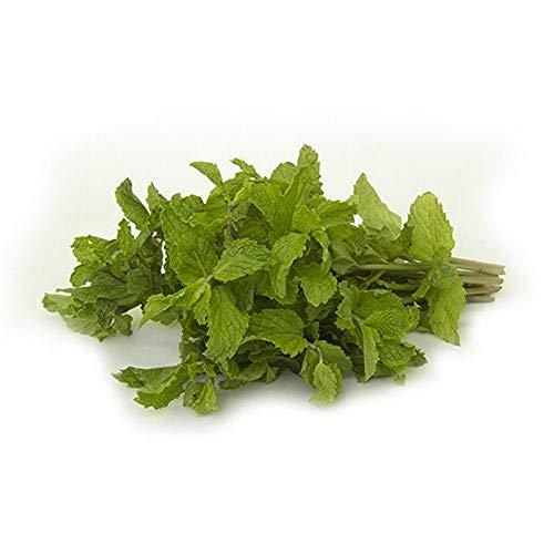 Fresh Produce Mint 1 pc (Approx. 80 - 100 gm)