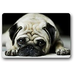 Custom Adorable Pug cachorro felpudos cubierta antideslizante lavable a máquina interior y exterior para cuarto de baño decoración de la cocina alfombra