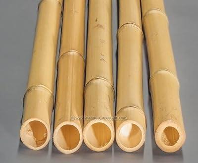 Bambusrohr gelb, Moso Bambus, gebleicht, Durch. 5- 6cm, Länge 200cm von bambus-discount.com - Du und dein Garten