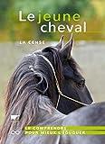 Le jeune cheval - La Cense