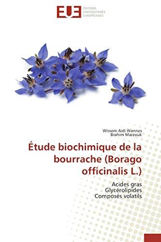 Étude biochimique de la bourrache (borago officinalis l.)