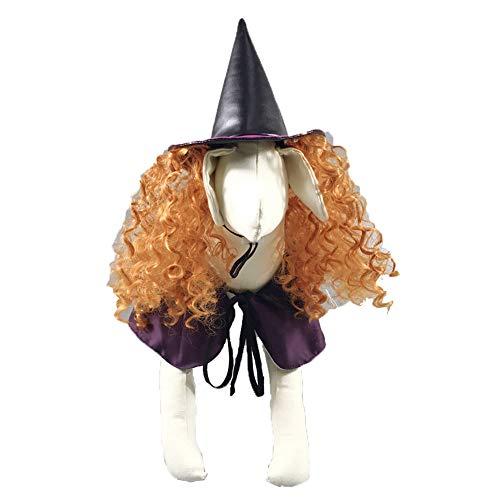 Hunde Kostüm Hexe - TFWJ Haustier Hund Katze Halloween Kostüme Hexe Lila Mantel Headwear,S