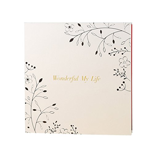 FOOHAO- Album photo magnétique auto-adhésif, enregistrement de la vie de famille, livre de voyage de l'amour, 20 Pages (40 Surface) Pages intérieures