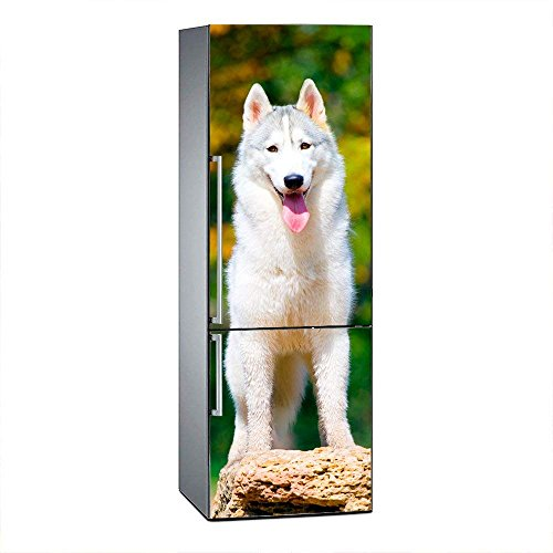 Oedim Vinyl Stickers Husky für Kühlschrank. | Kühlschrank Aufkleber | Verschiedene Maße: 185x60cm| Klebstoffbeständig und Einfache Anwendung | Stilvoller Design-Dekorativer