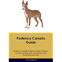 Podenco Canario Guide Podenco Canario Guide Includes: Podenco Canario Training, Diet, Socializing,