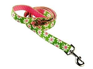 Yellow Dog Design Uptown Laisse pour chien Motif marguerites et pois Vert/rose 1,9cm