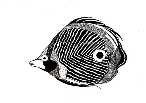 Strukturierte Leinwand Kunst (Natur Kunstdruck Tropischer Fisch - Natur Gemälde, Landschaft, Tier, Biologische Zeichnung, Natur Kunst, Dekoration)