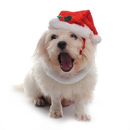AAA226 Haustier Hund Katze niedlich Weihnachten Santa Hut Kragen mit Jingle Bells Weihnachten Kostüm Kleid - L (Red)