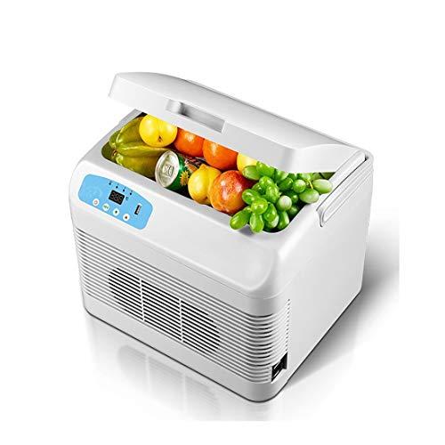 Auto Kleiner Kühlschrank mit kleinem Verwendungszweck, 12L Fassungsvermögen der Heizung ! (Color : Double) - Doppel-tür Kompakt Kühlschrank