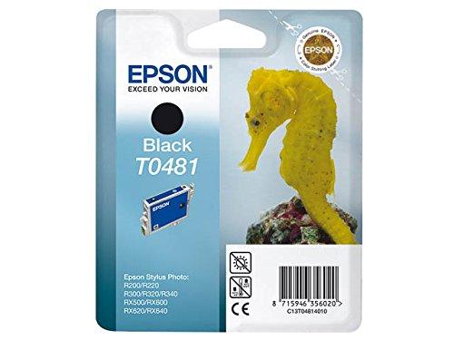 Preisvergleich Produktbild Epson C13T04814010 Original Tinte für Stylus Photo R300/RX500 schwarz