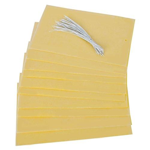 Yiyu Lot de 20 Papier Tue-mouche Double Face Pièges à Mouches Papier Anti-insecte Papier Gluant pour Attraper des Insectes Jaune