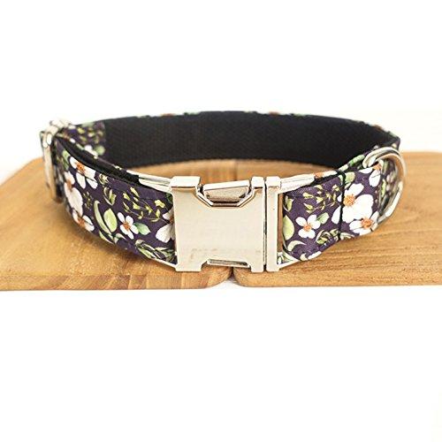 PENIVO Pet Flower Designer Basic Hundehalsband, Hals 56cm-62cm, Breite 2,5cm, Halsbänder für Hunde, Medium, 5 Größen, Passende Hundeleine separat erhältlich -