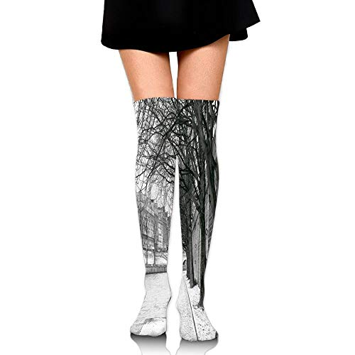 Casepillows Seine River Paris France Snowy Winter In Urban City Trees Women's Fashion Over The Knee High Socks (60cm)