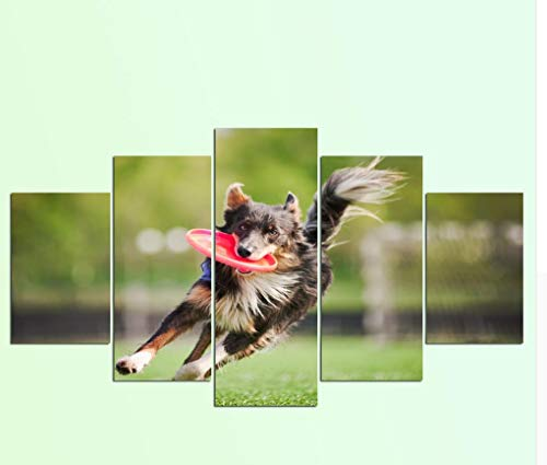 zhfq Leinwand Gemälde(Kein Rahmen) Art Abstract Leinwand Wandbild Dekoration 5 Platten Rand Collie Hund Malerei Druck Auf Leinwand Tierrahmen Rahmen -