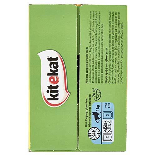 Kitekat Cibo per Gatto, il Pescatore in Gelatina con Trota, Salmone, Tonno e Pesce Bianco 12 x 100 g - 4 Confezioni (48 Pezzi in Totale)