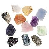 B Blesiya 12 Piezas Muestras de Minerales y Rocas Coleccionale con Caja de Almacenamiento, Regalo de Recuerdo para Adultos Niños